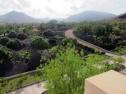 Appartamenti Marola-Portosin vista