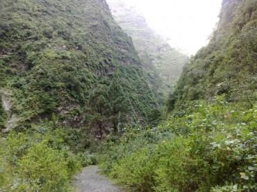 Barranco del Infierno Tenerife