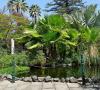 Jardin Sitio Litre